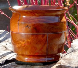Catalina Ironwood Pot w- veneer 1