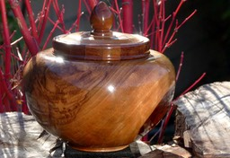 Walnut Lidded Pot 1